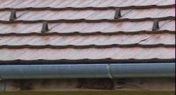 Van hófogó a tetődön?